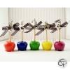 Choix de sautoirs pommes d'amour plusieurs couleur pomme d'amour ruban organza Chat Pristy