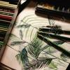 peinture de feuilles de palmier réalisée à l'aquarelle et crayon