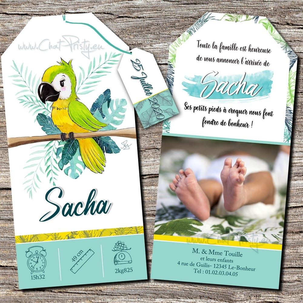 Faire-part de naissance perroquet ambiance tropical genre mixte