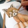 Dessin de panda roux fait main au crayon par la créatrice Laura Lefebvre