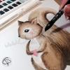 Illustration d'écureuil fait par Laura Lefebvre à l'aquarelle