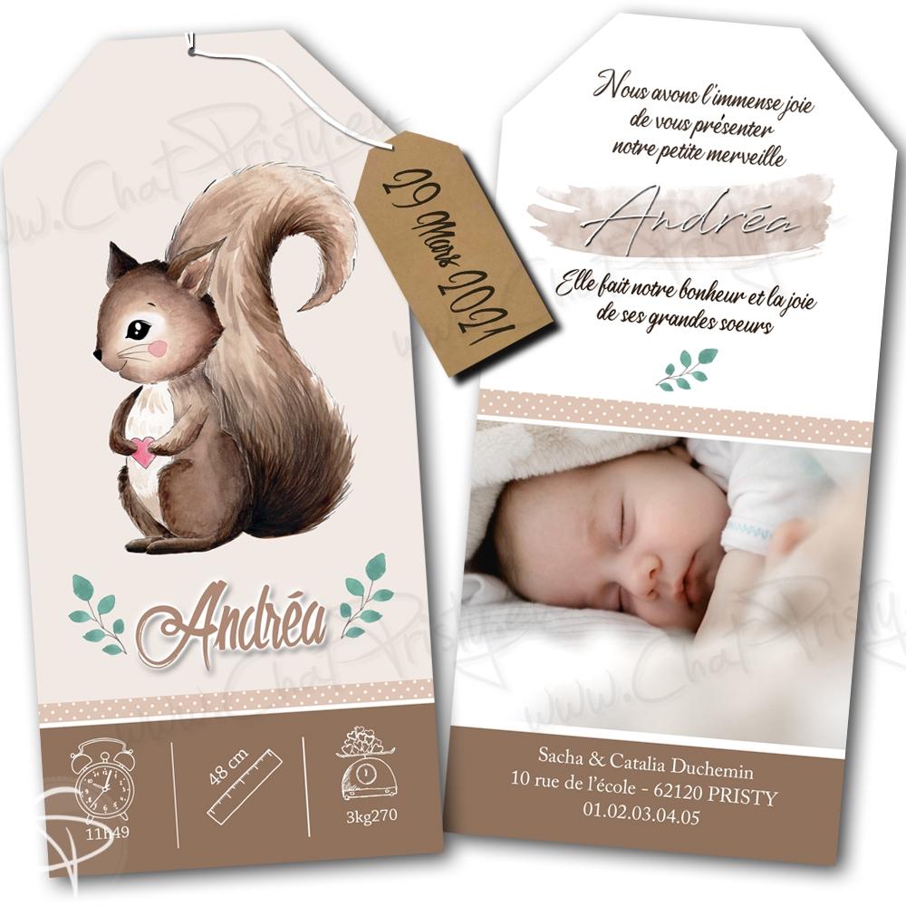 Faire-part de naissance original avec illustration d'écureuil