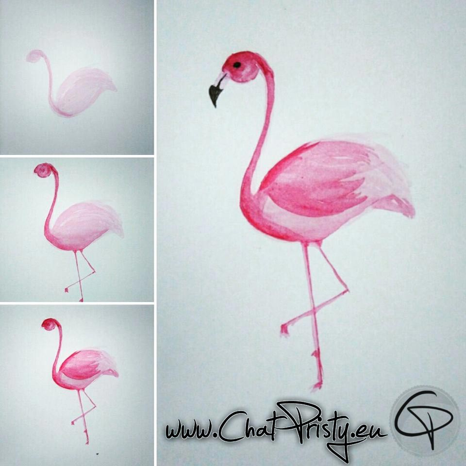 Illustration flamant rose faite main dessin aquarelle étape par étape Chat Pristy