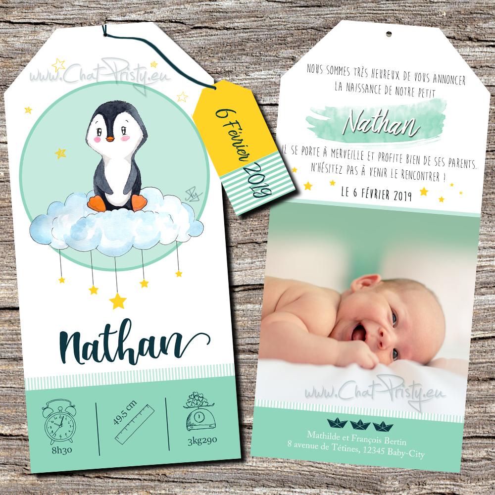 Faire-part de naissance original pour garçon avec un bébé pingouin personnalisable