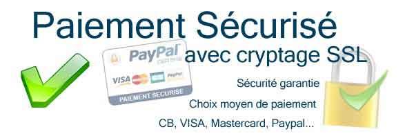 paiement sécurisé sur toute la boutique Chat Pristy