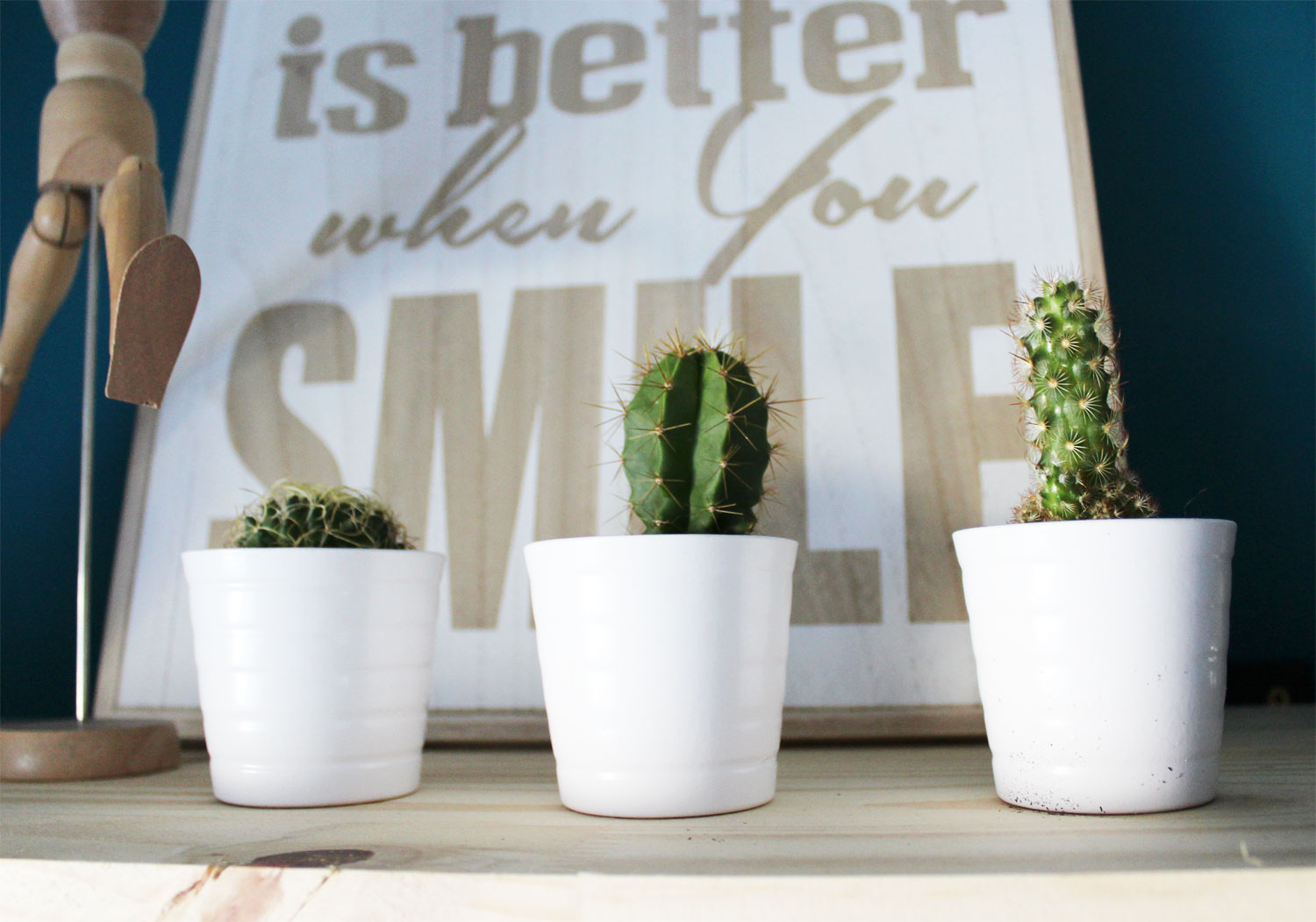 Life is better when you smile et cactus